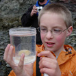 COSEE Alaska Educator Guide to Resources for Teaching about Alaska's Sea and Rivers