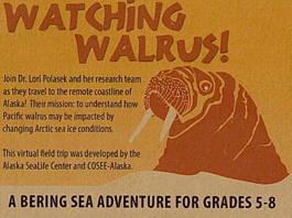 Watching Walrus! A Virtual Field Trip for Grades 5-8